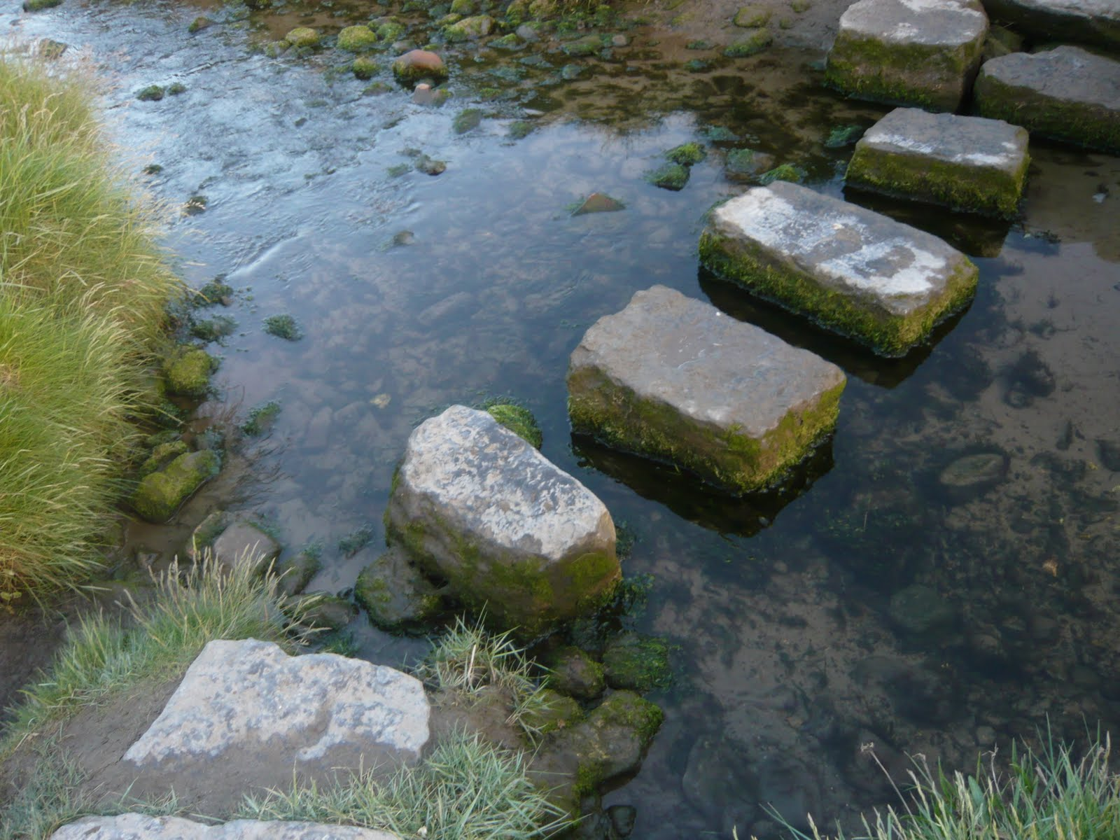 stepping stones | Wandervogel Diary Stepping Stones