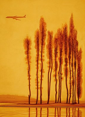treesplanepop[1]