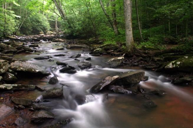 Nickel Creek4