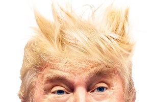 vanities-i-am-the-swoosh-donald-trump-hair