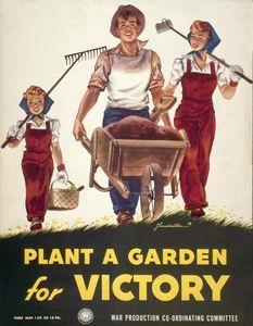 Victory-Garden-4