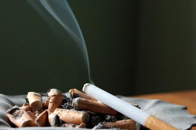 cigarette-1199292_960_720